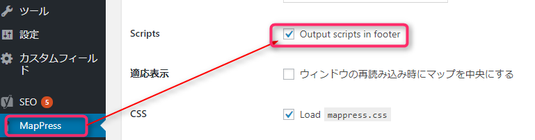 Output scripts in footer